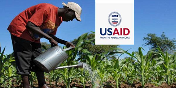 USAID Nigeria Covid-19