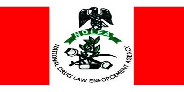 NDLEA Visa Clearance Requirement