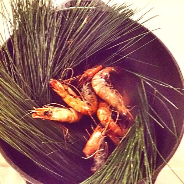 Prawns with rocksalt and Pine Needles