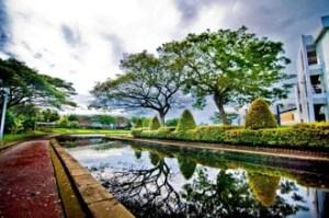 A beautiful campus environemnt for conducive study at Curtin University Sarawak