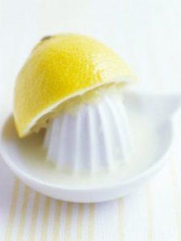 citrus juicer 3D print