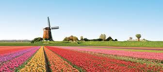 Trung tâm tư vấn du học Hà Lan uy tín, chất lượng EduTrust