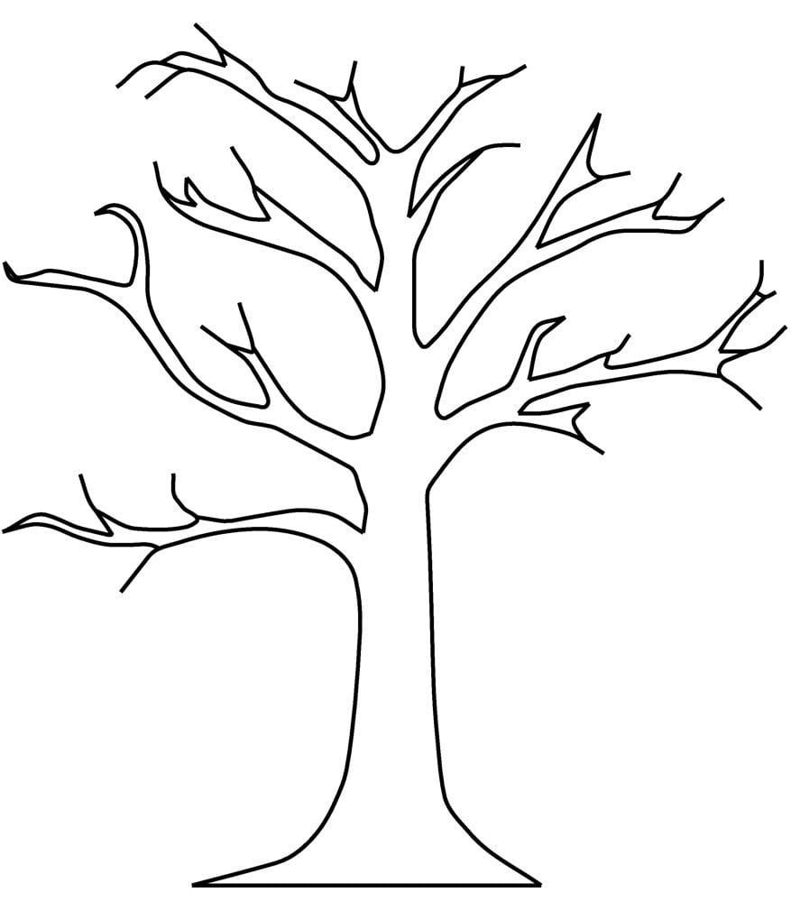 Jesień zamknięta w pudełku Dzień Drzewa Jesień Jesień Joanna Lewandowska Kreatywnie z dzieckiem Prace plastyczne