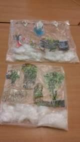 W zimowym ogrodzie z użyciem waty Izabela Kowalska Prace plastyczne Zima (Prace plastyczne)