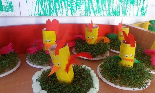 Kurczaczek z rolki