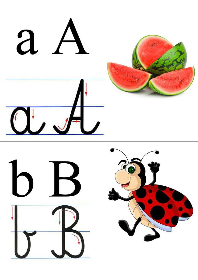 Alfabet: tabliczki z obrazkami Ania Jóźwina Litery - nauka pisania Nauka pisania Pomoce dydaktyczne