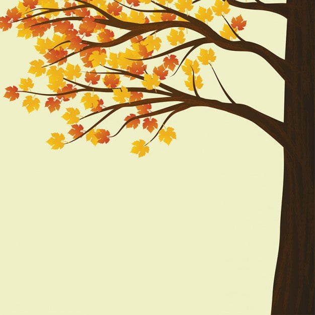 Wierszyk Jesienne Drzewa Dla Dzieci Przedszkolaków Do Pobrania