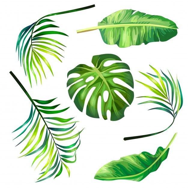 Palmy na Niedziele Palmową Agata Dziechciarczyk Okolicznościowe Wierszyki