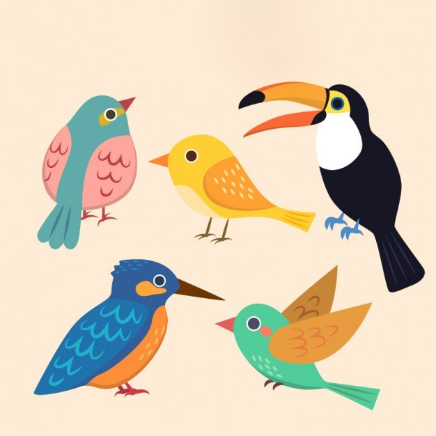Spotkanie z ptakami Agata Dziechciarczyk Międzynarodowy Dzień Ptaków Wierszyki Wiosna (Wierszyki)