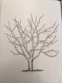 Jesienne drzewo Jesień Jesień Patrycja Sulej Pomoce dydaktyczne Prace plastyczne Prace plastyczne (Dzień drzewa) Prace plastyczne (Jesień)