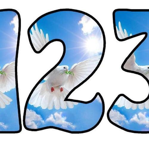 Zimorodek: litery okrągłe Litery i cyfry Ptaki Zimorodek