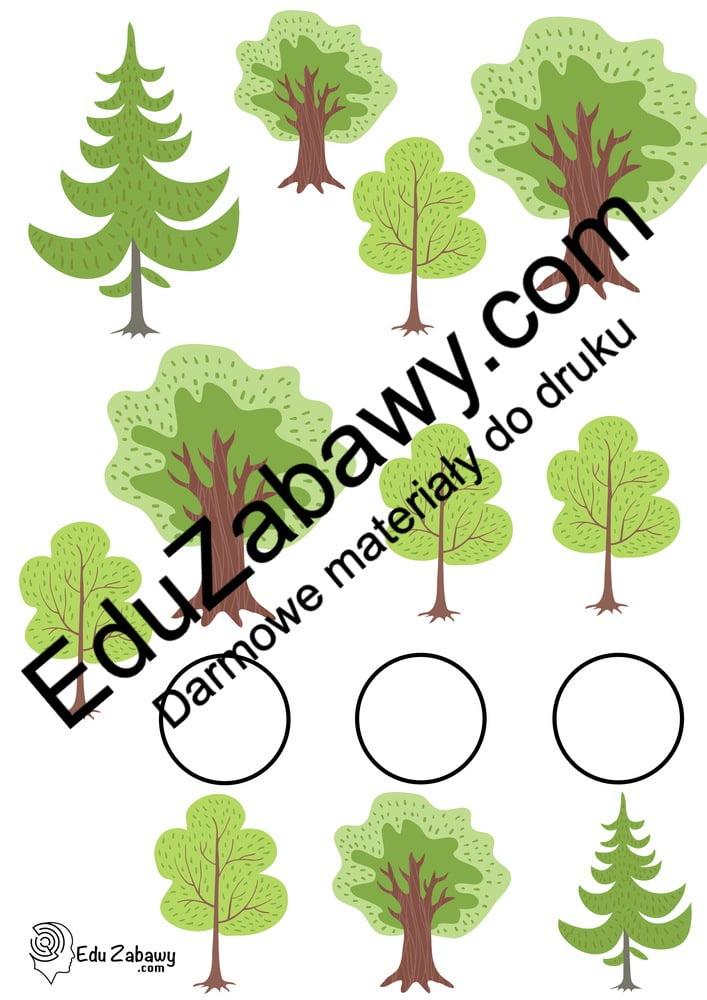 Dzień Drzewa: Bystre oczko (10 kart pracy) Bystre oczko Dzień Drzewa Karty pracy Karty pracy (Dzień drzewa)