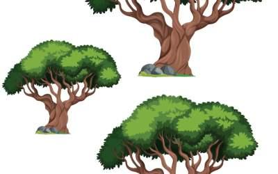 Dzień Drzewa: Uszereguj (10 kart pracy)