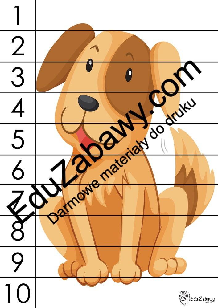Dzień Kundelka: Puzzle 10 elementów (10 kart pracy) Dzień Kundelka Karty pracy Karty pracy (Dzień Kundelka) Puzzle