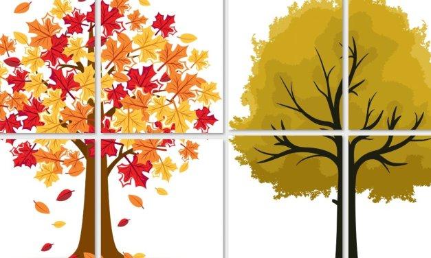 Dekoracje: Drzewa jesienne XXL (10 szablonów)