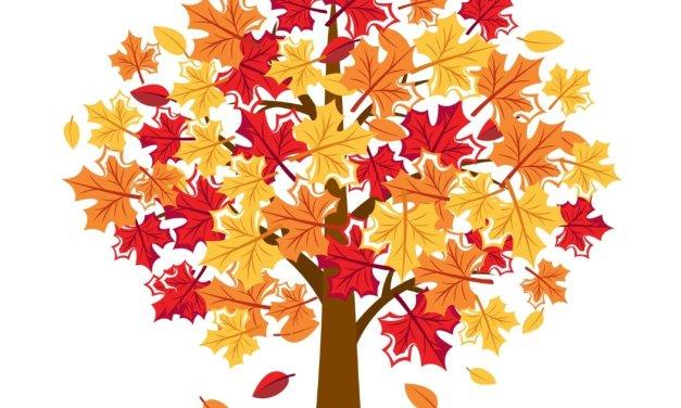 Dekoracje: Drzewa jesienne (11 szablonów)