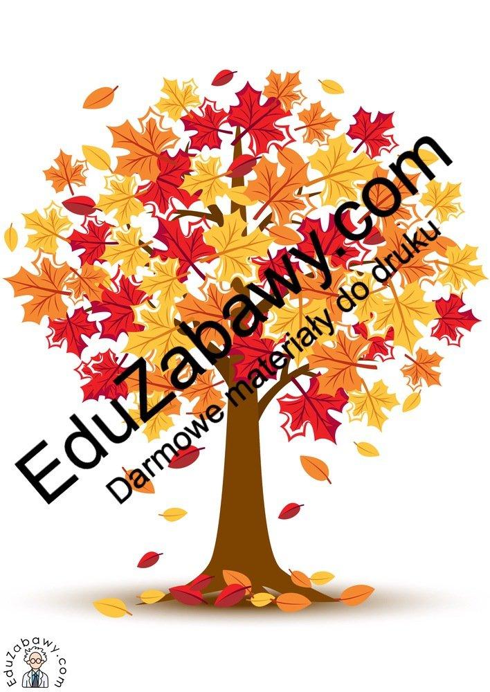 Dekoracje: Drzewa jesienne (11 szablonów) Dekoracje Dekoracje (Dzień Drzewa) Dekoracje (Dzień Jeża) Dekoracje (Jesień) Międzynarodowy Dzień Ptaków