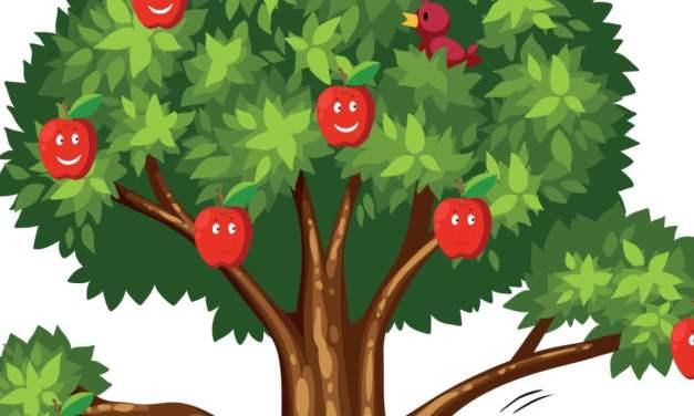 Dekoracje: Drzewa owocowe (6 szablonów)