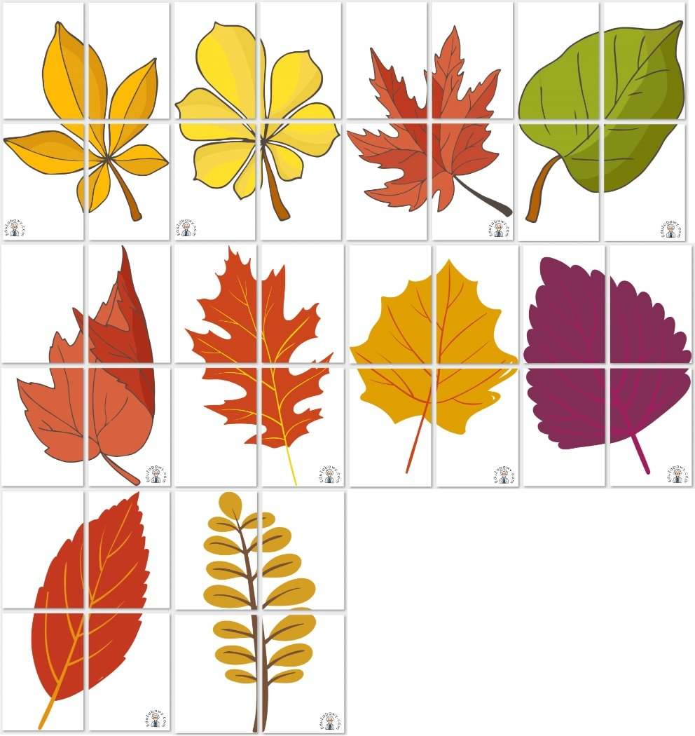 Dekoracje XXL: Liście (10 szablonów) Dekoracje Dekoracje (Dzień Drzewa) Dekoracje (Jesień)