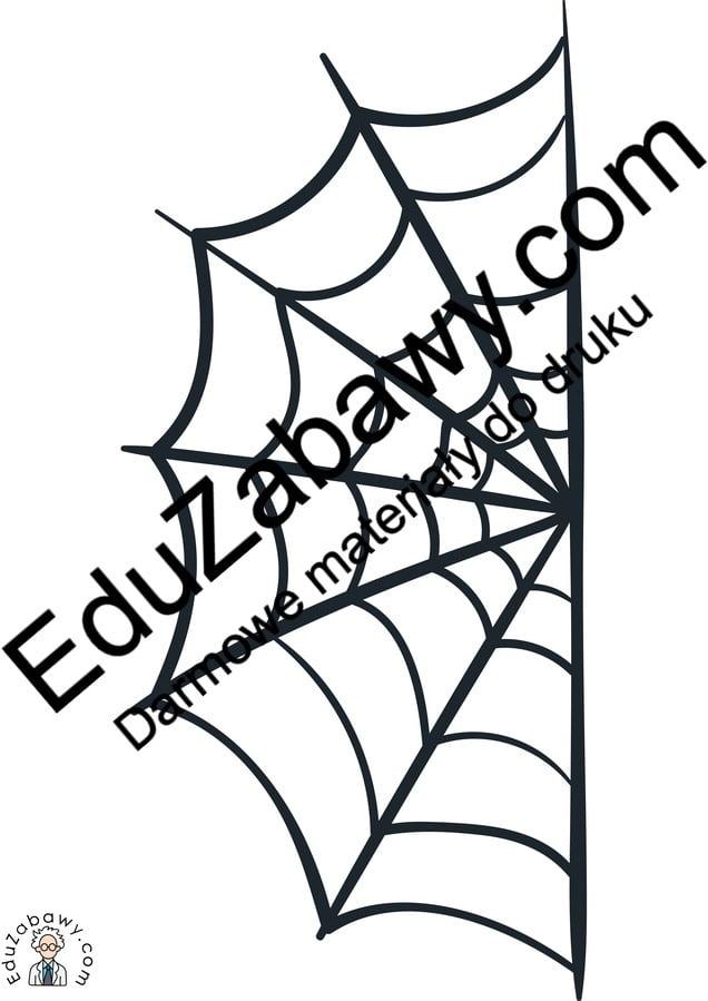 Dekoracje: Pajęczyna Dekoracje Dekoracje (Halloween) Święto Dyni / Halloween