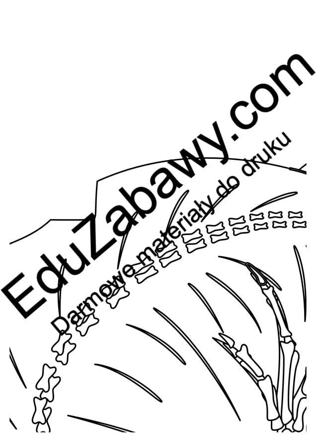 Kolorowanki XXL: Szkielet Dinozaura (10 szablonów) Dzień Dinozaura Kolorowanki Kolorowanki (Dzień Dinozaura) Kolorowanki XXL Zwierzęta (Kolorowanki)