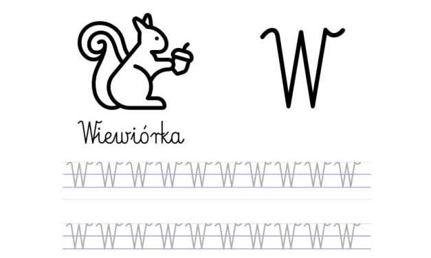 Pisanie po śladzie w liniaturze: Litera W (3 karty pracy)