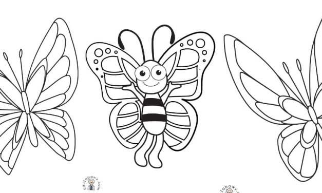 Kolorowanki: Motyle (10 szablonów)