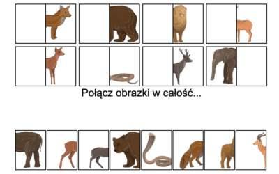 Gra online: Połącz obrazki: Dzikie zwierzęta