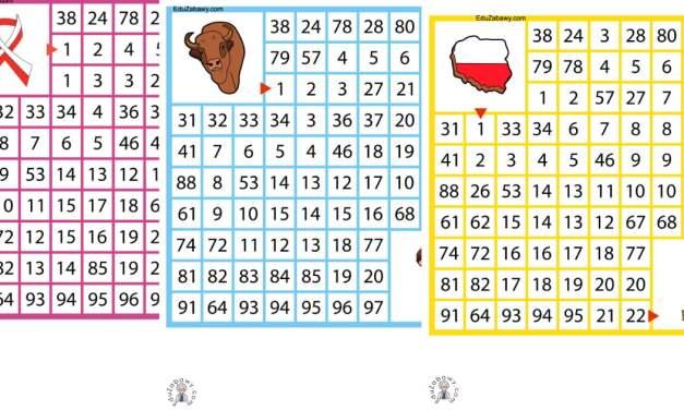 Labirynty matematyczne: Patriotyczne