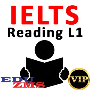 IELTS Reading Level 1 Course - VIP Gold