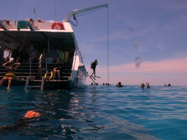 Great Barrier Reef- Taka