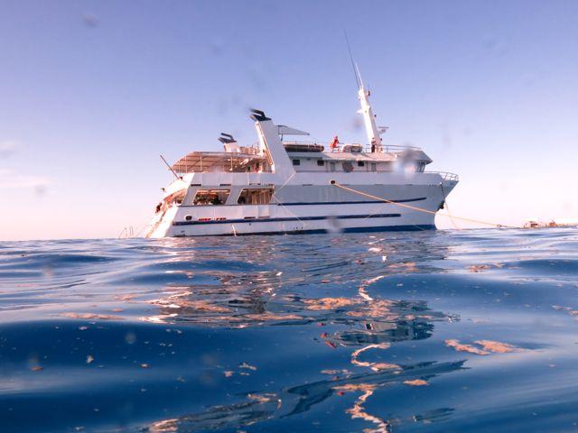 Great Barrier Reef-Taka