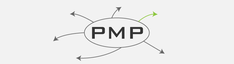 How to Get PMP Certified in 2017 — free PMP study notes