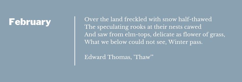 Poem Extract for Thaw by Edward Thomas