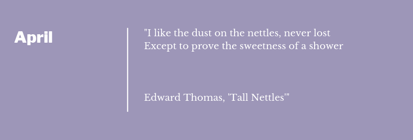 Edward Thomas - Tall Nettles Poem Extract April