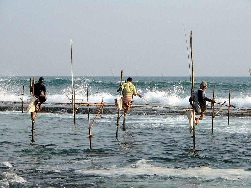 Sri Lanka's Stilt Fishermen