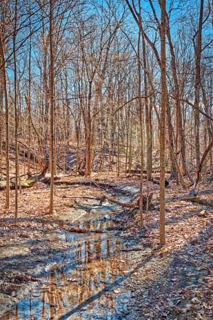 Creek in February