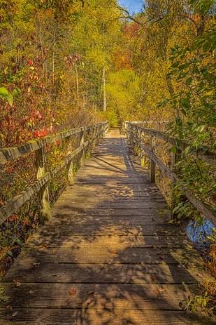 Marsh Bridge in October Light