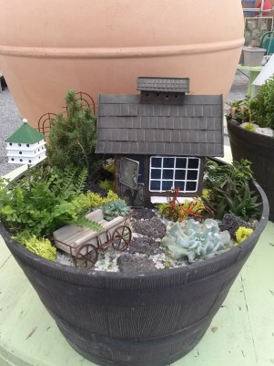 Miniature Garden Items at Edward's Garden Center