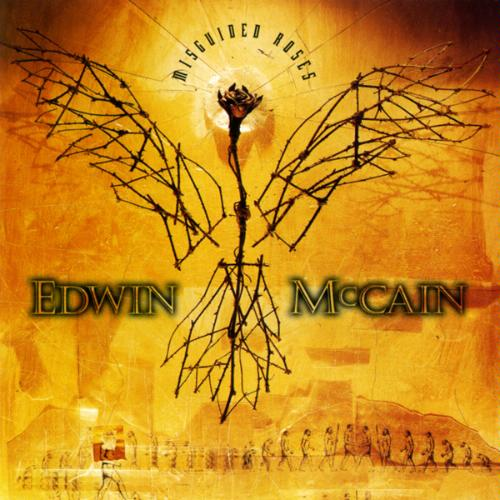 Image result for Edwin McCain Misguided Roses