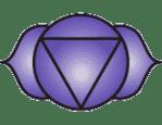 De 7 chakras van ons etherisch lichaam - de 7 chakras - Edwin van der Hoeven