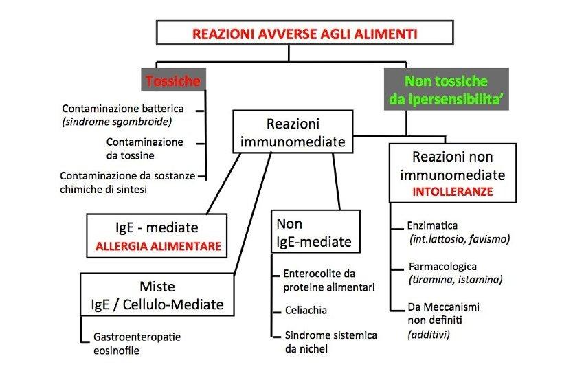 iper-reattivita-alimentare-dott.ssa-edy-virgili