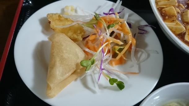 中華料理大福サラダ春巻き