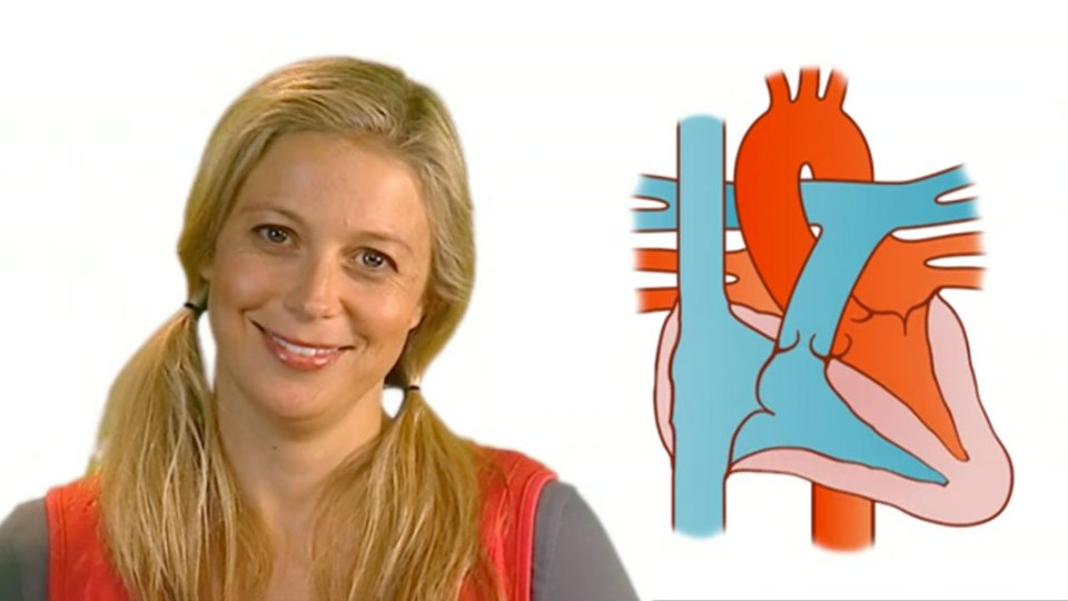 Heart Kids presenter with diagram