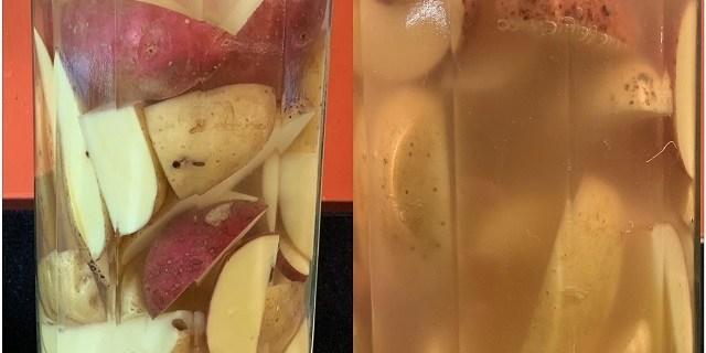 Gefermenteerd aardappelen