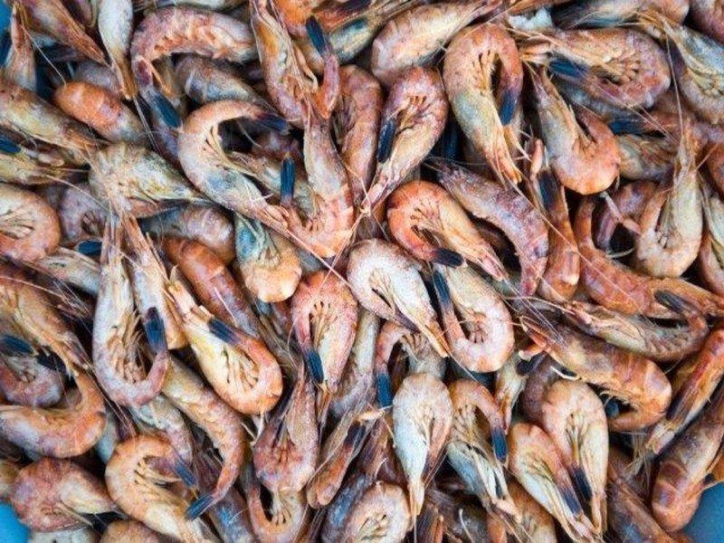 Grijze garnalen Vishandel De Vis / www.eenlepeltjelekkers.be