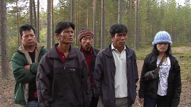 Soomes algab marjakorjamise hooaeg, aga taimaalasi tuleb oodatust vähem