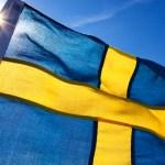 Koroona karjaimmuunsust kaitsnud Rootsi professor tunnistab, et hinnang põhines valearvestusel