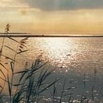 Soomes võidakse homme pühapäeval lüüa veebruari soojarekord