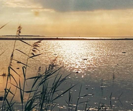 Värske prognoos: Musta mere äärest peaks soojus Soome jõudma ja jaaniaeg tuleb tavapärasest soojem
